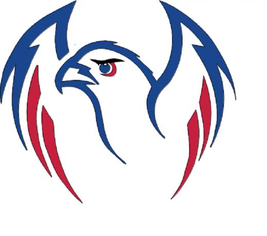 The Hawk 1