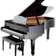 Senior wins Piano Competition!